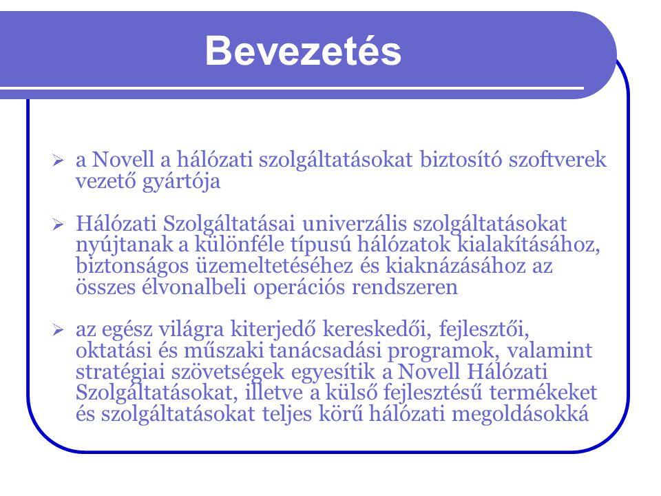 Novell NetWare 3.xx  minden szerveren külön felhasználónév és jelszó  a merevlemez kötetekre (volume) van osztva, kötelező kötet a SYS, hasonló a particióhoz, de egy kötet több partición is lehet