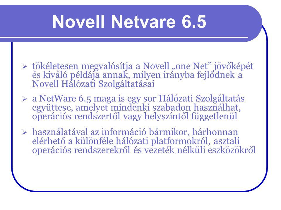 """Novell Netvare 6.5  tökéletesen megvalósítja a Novell """"one Net"""" jövőképét és kiváló példája annak, milyen irányba fejlődnek a Novell Hálózati Szolgál"""