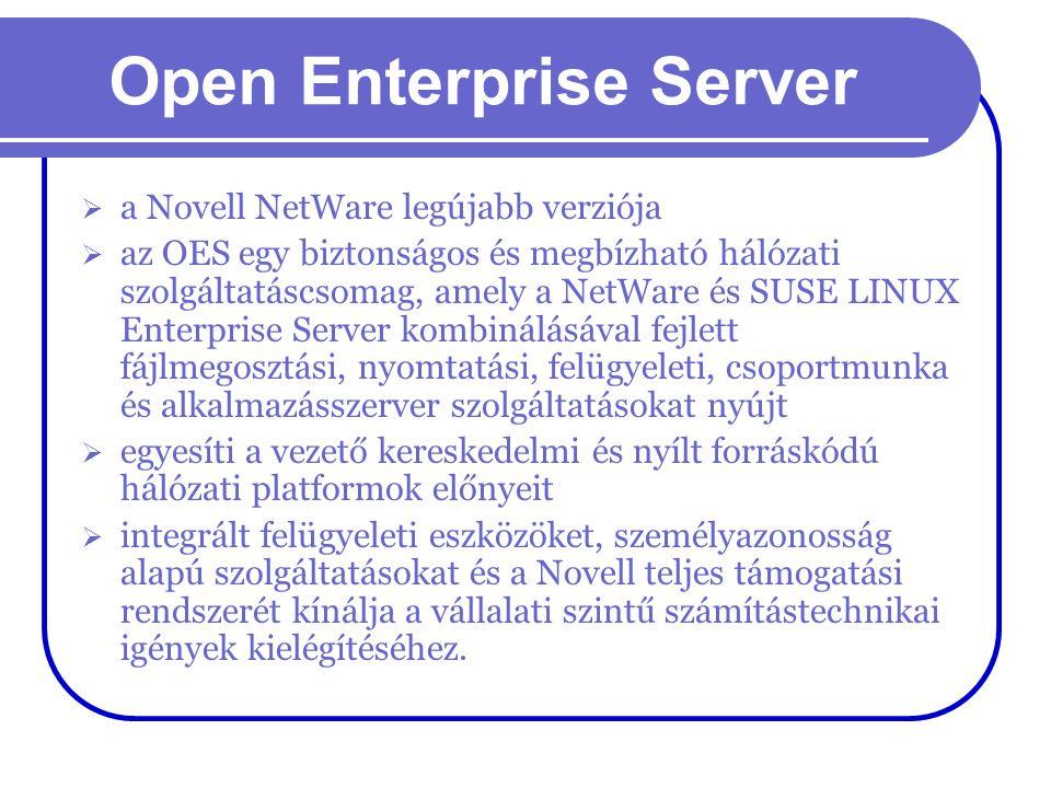 Open Enterprise Server  a Novell NetWare legújabb verziója  az OES egy biztonságos és megbízható hálózati szolgáltatáscsomag, amely a NetWare és SUS