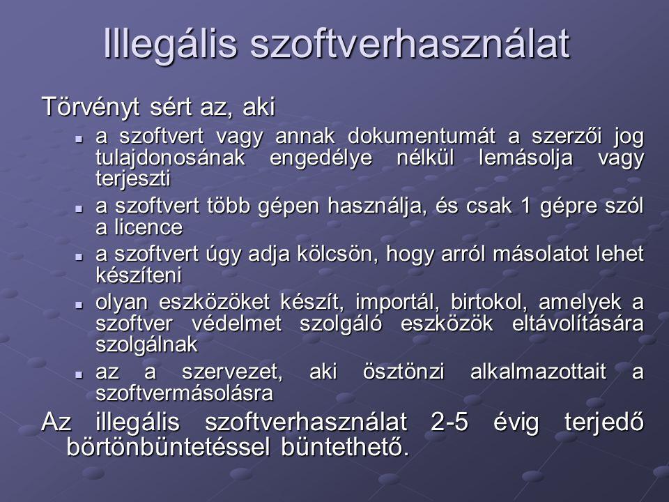 Illegális szoftverhasználat Törvényt sért az, aki a szoftvert vagy annak dokumentumát a szerzői jog tulajdonosának engedélye nélkül lemásolja vagy ter