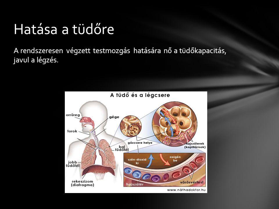 A rendszeresen végzett testmozgás hatására nő a tüdőkapacitás, javul a légzés. Hatása a tüdőre