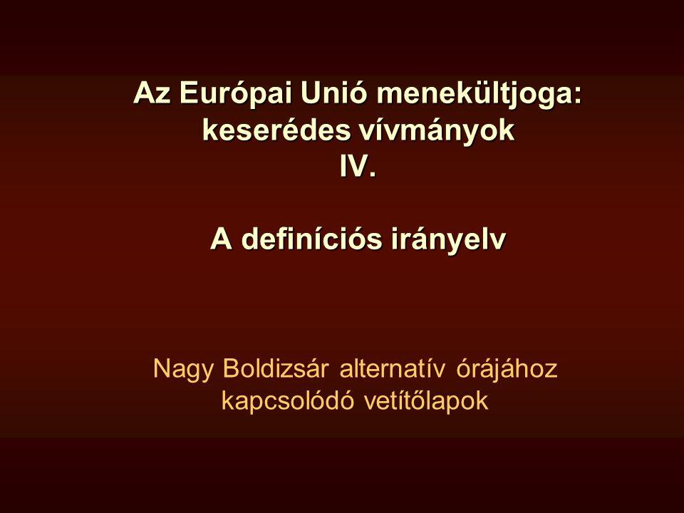 Definíciós irányelv - üldöző/védelmező Üldöző/ súlyos hátrány okozója (6 §) az állam; az államot vagy az államterület egy jelentős részét ellenőrzésük alatt tartó pártok vagy szervezetek ; az államtól független szereplők ha az állam vagy nemzetközi szervezetek nem képesek vagy nem hajlandóak védelmet nyújtani Védelmező (7.