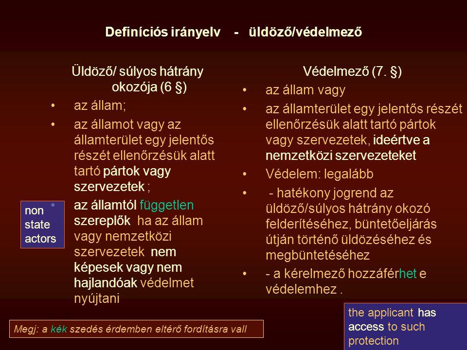Definíciós irányelv - üldöző/védelmező Üldöző/ súlyos hátrány okozója (6 §) az állam; az államot vagy az államterület egy jelentős részét ellenőrzésük