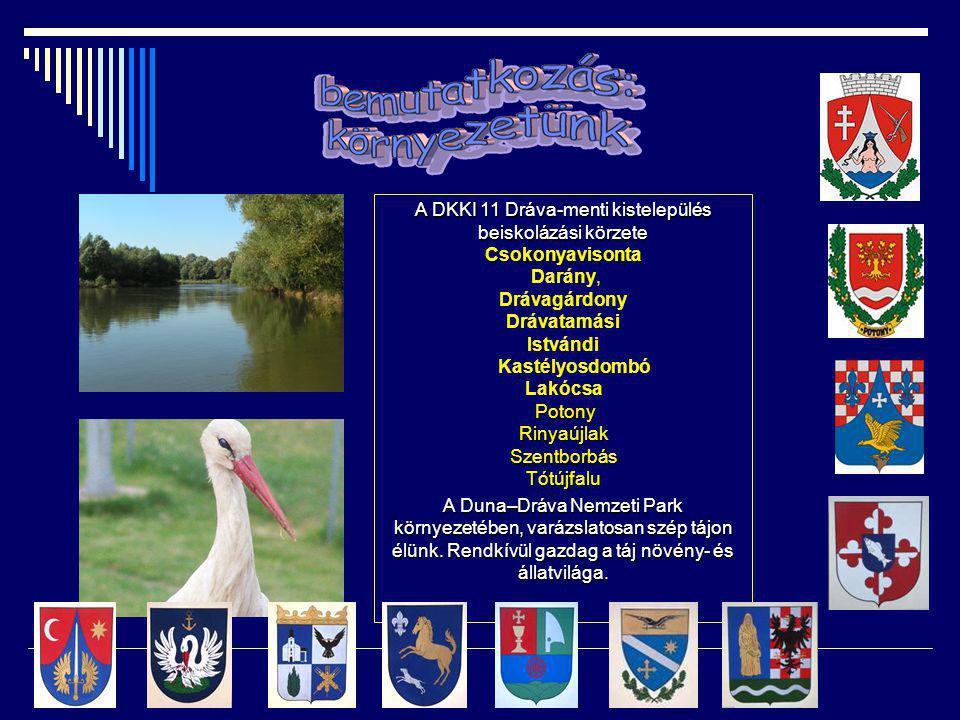 A DKKI 11 Dráva-menti kistelepülés beiskolázási körzete Csokonyavisonta Darány, Drávagárdony Drávatamási Istvándi Kastélyosdombó Lakócsa Potony PotonyRinyaújlakSzentborbásTótújfalu A Duna–Dráva Nemzeti Park környezetében, varázslatosan szép tájon élünk.