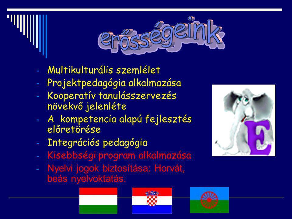 - Multikulturális szemlélet - Projektpedagógia alkalmazása - Kooperatív tanulásszervezés növekvő jelenléte - A kompetencia alapú fejlesztés előretörése - Integrációs pedagógia - Kisebbségi program alkalmazása - Nyelvi jogok biztosítása: Horvát, beás nyelvoktatás.