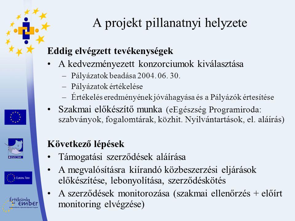 A projekt pillanatnyi helyzete Eddig elvégzett tevékenységek A kedvezményezett konzorciumok kiválasztása –Pályázatok beadása 2004. 06. 30. –Pályázatok