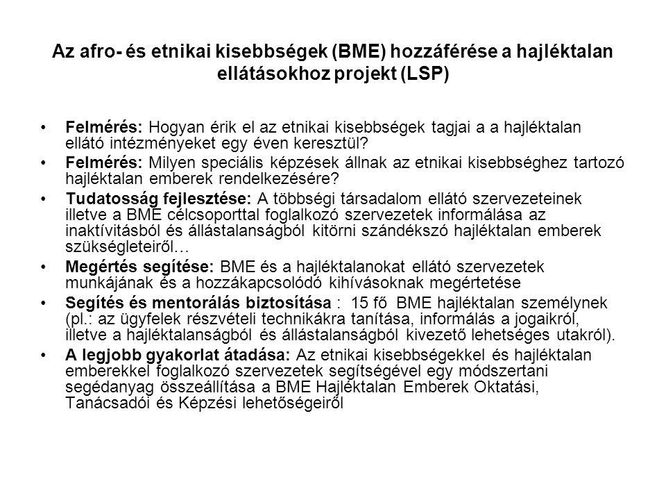 LSP: Célcsoportok és nehézségek lefedése célcsoportok BME hajléktalan személyek (15 fős minta) BME hajléktalan ellátó szervezetek Hagyományos (civil, helyi, állami) hajléktalan ellátó szervezetek Nehézségek BME/ hajléktalan/ munkanélküli – munkaképtelen BME/ hajléktalan/ munkanélküli- börtönből kikerülők BME/ hajléktalan/ munkanélküli– újonnan az országba érkezők (elégtelen nyelvtudás, a befogadó ország nem megfelelő ismerete) BME/ Hajléktalan/ munkanélküli– pszichiátriai problémák BME/ hajléktalan/ munkanélküli – szenvedélybetegség