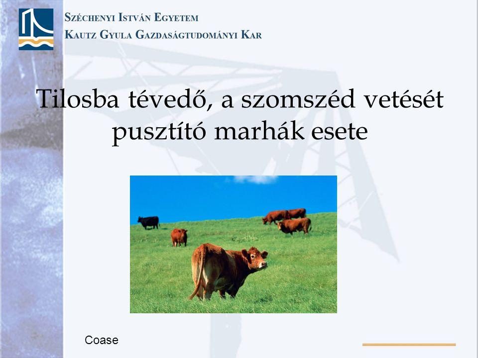 Tilosba tévedő, a szomszéd vetését pusztító marhák esete Coase