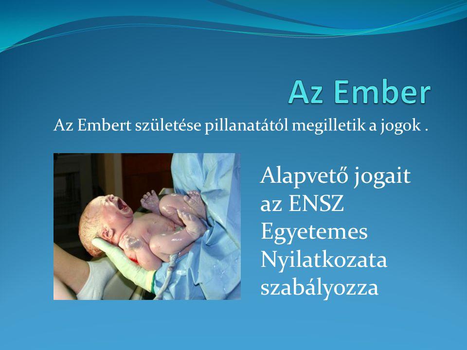 Az Embert születése pillanatától megilletik a jogok. Alapvető jogait az ENSZ Egyetemes Nyilatkozata szabályozza