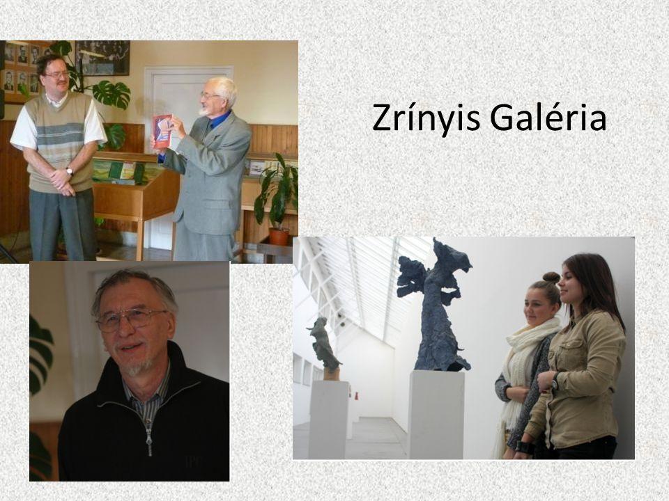 Zrínyis Galéria