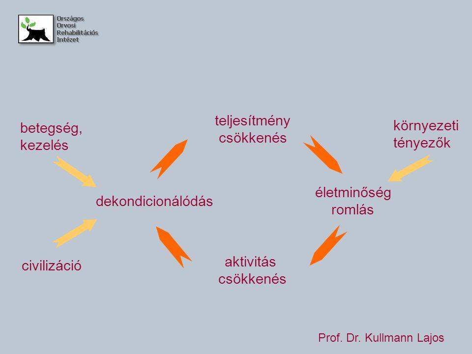 teljesítmény csökkenés életminőség romlás aktivitás csökkenés dekondicionálódás betegség, kezelés civilizáció környezeti tényezők Prof.