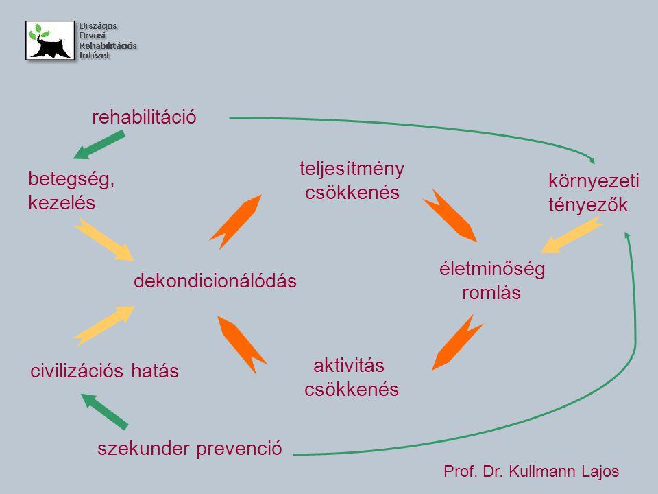 teljesítmény csökkenés életminőség romlás aktivitás csökkenés dekondicionálódás betegség, kezelés civilizációs hatás rehabilitáció szekunder prevenció környezeti tényezők Prof.