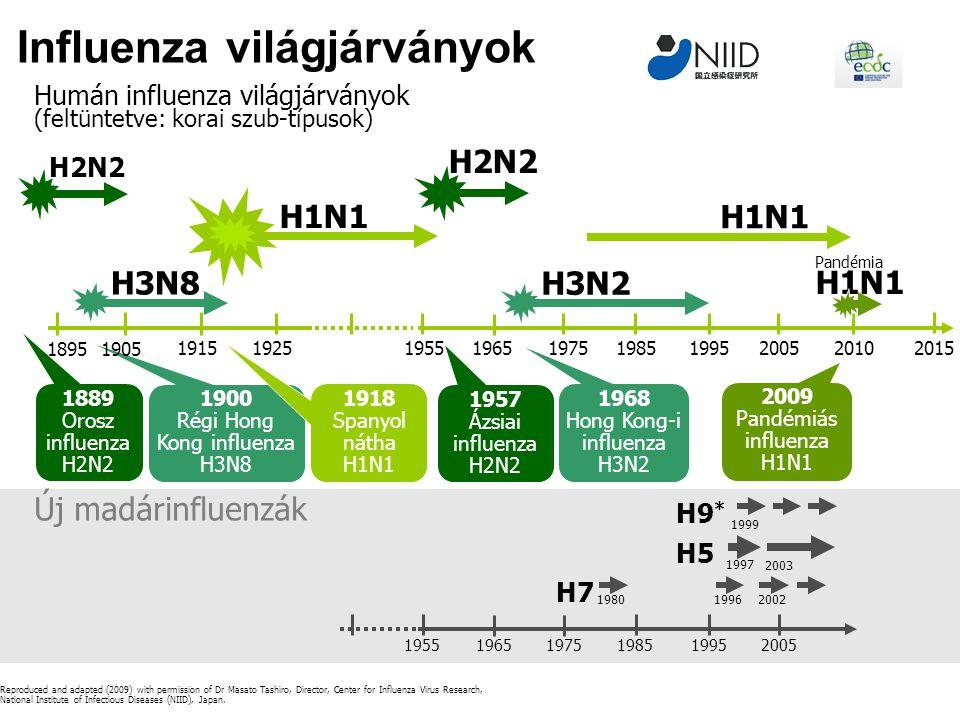 Influenza világjárványok H7 H5 H9 * 1980 1997 Új madárinfluenzák 19962002 1999 2003 195519651975198519952005 H1N1 H2N2 1889 Orosz influenza H2N2 1957