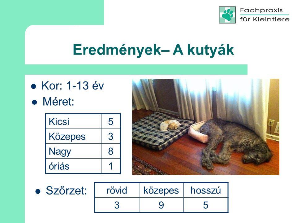 Eredmények– A kutyák Kor: 1-13 év Kicsi5 Közepes3 Nagy8 óriás1 Szőrzet: rövidközepeshosszú 395 Méret: