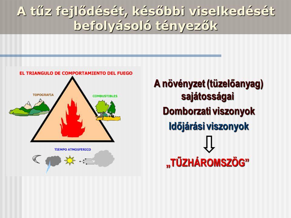A tűz fejlődését, későbbi viselkedését befolyásoló tényezők A növényzet (tüzelőanyag) sajátosságai A növényzet (tüzelőanyag) sajátosságai Domborzati v