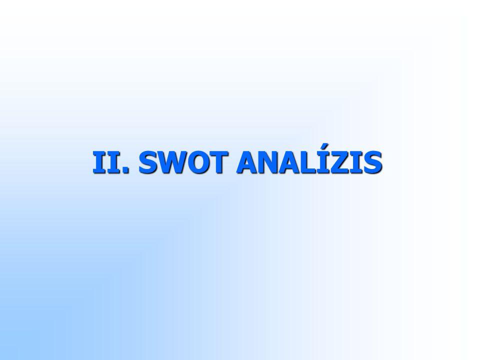 II. SWOT ANALÍZIS