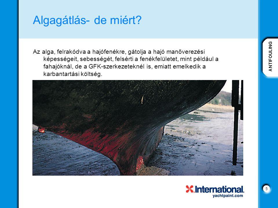 ANTIFOULING 5 Algagátlás- de miért? Az alga, felrakódva a hajófenékre, gátolja a hajó manőverezési képességeit, sebességét, felsérti a fenékfelületet,