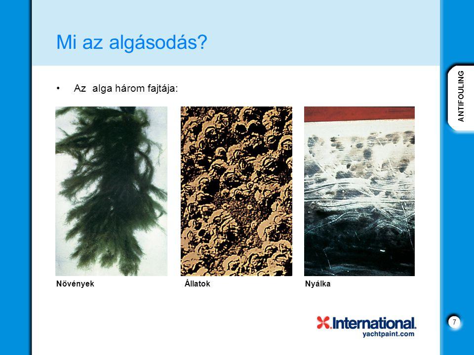 7 Mi az algásodás? Az alga három fajtája: NövényekÁllatokNyálka