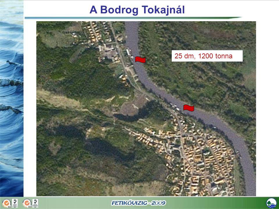 A Bodrog Tokajnál 25 dm, 1200 tonna