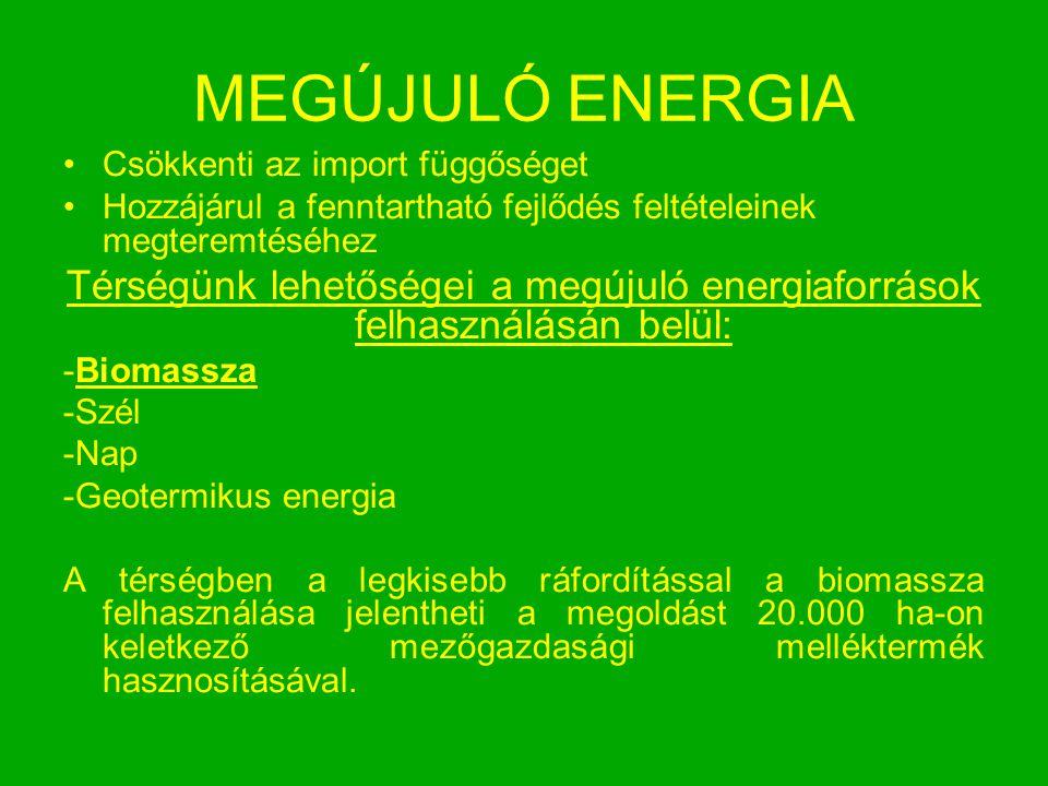 MEGÚJULÓ ENERGIA Csökkenti az import függőséget Hozzájárul a fenntartható fejlődés feltételeinek megteremtéséhez Térségünk lehetőségei a megújuló ener