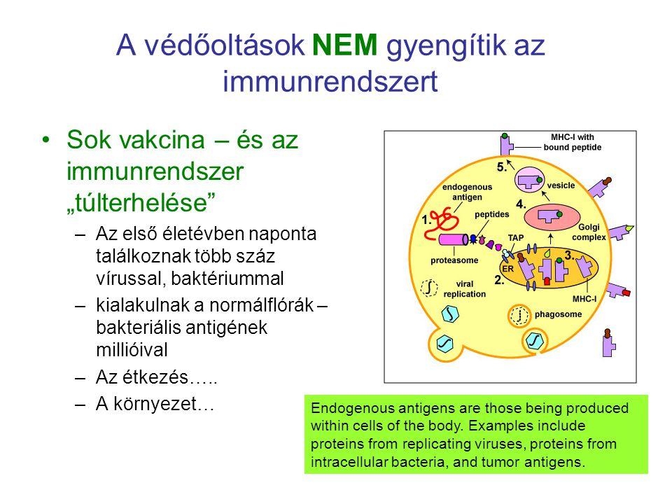 """A védőoltások NEM gyengítik az immunrendszert Sok vakcina – és az immunrendszer """"túlterhelése"""" –Az első életévben naponta találkoznak több száz víruss"""