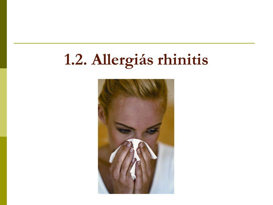 1.2. Allergiás rhinitis