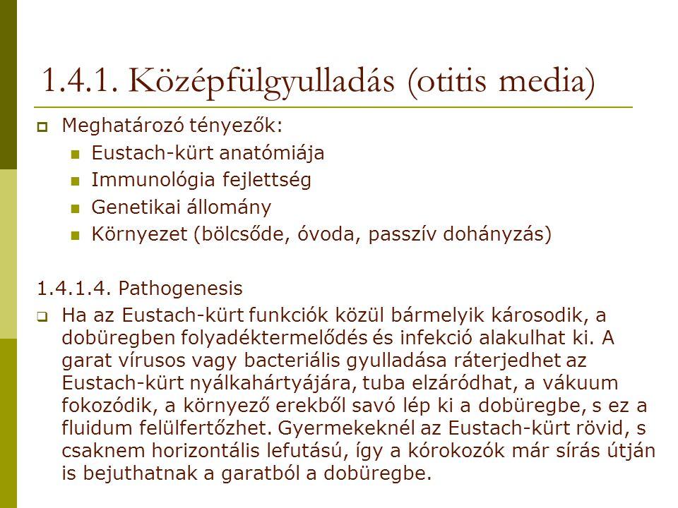 1.4.1. Középfülgyulladás (otitis media)  Meghatározó tényezők: Eustach-kürt anatómiája Immunológia fejlettség Genetikai állomány Környezet (bölcsőde,