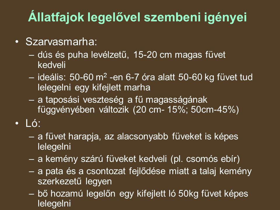 Állatfajok legelővel szembeni igényei Szarvasmarha: –dús és puha levélzetű, 15-20 cm magas füvet kedveli –ideális: 50-60 m 2 -en 6-7 óra alatt 50-60 kg füvet tud lelegelni egy kifejlett marha –a taposási veszteség a fű magasságának függvényében változik (20 cm- 15%; 50cm-45%) Ló: –a füvet harapja, az alacsonyabb füveket is képes lelegelni –a kemény szárú füveket kedveli (pl.