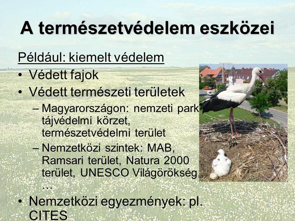 A természetvédelem eszközei Például: kiemelt védelem Védett fajok Védett természeti területek –Magyarországon: nemzeti park, tájvédelmi körzet, természetvédelmi terület –Nemzetközi szintek: MAB, Ramsari terület, Natura 2000 terület, UNESCO Világörökség, … Nemzetközi egyezmények: pl.