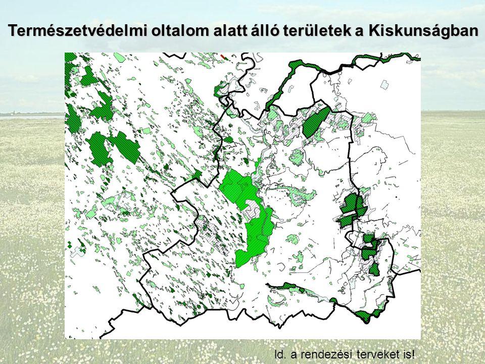 Természetvédelmi oltalom alatt álló területek a Kiskunságban ld. a rendezési terveket is!