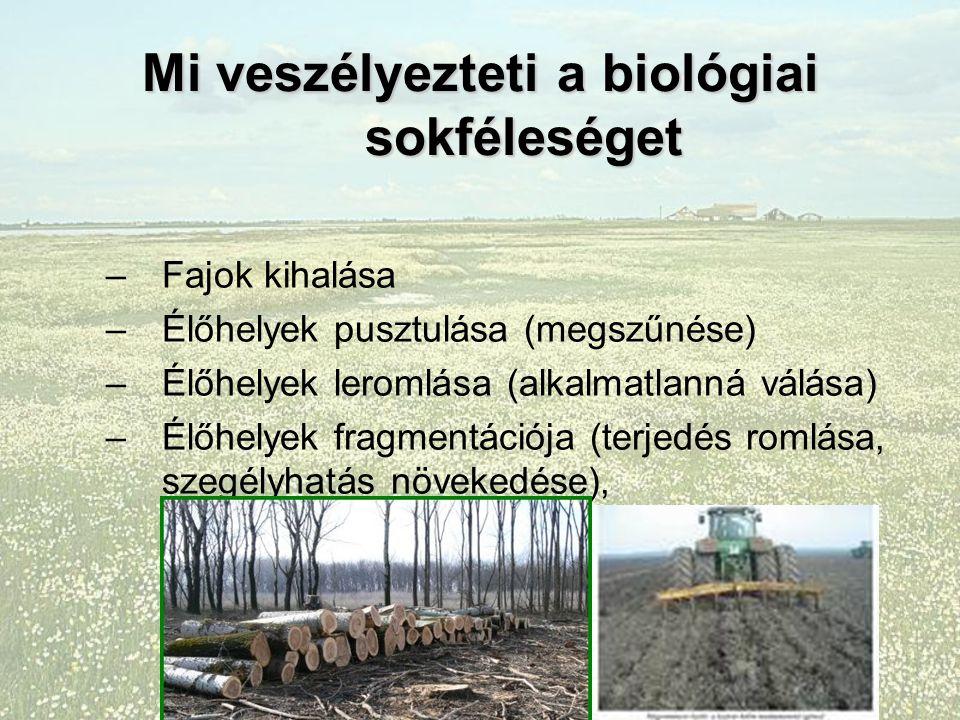 Mi veszélyezteti a biológiai sokféleséget –Fajok kihalása –Élőhelyek pusztulása (megszűnése) –Élőhelyek leromlása (alkalmatlanná válása) –Élőhelyek fragmentációja (terjedés romlása, szegélyhatás növekedése),