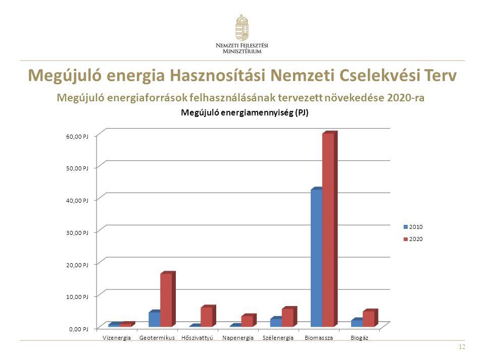12 Megújuló energiaforrások felhasználásának tervezett növekedése 2020-ra Megújuló energia Hasznosítási Nemzeti Cselekvési Terv