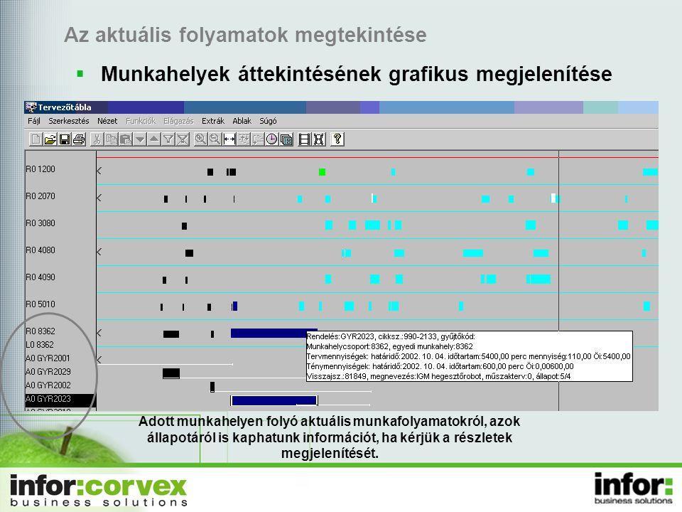 Az aktuális folyamatok megtekintése  Munkahelyek áttekintésének grafikus megjelenítése Adott munkahelyen folyó aktuális munkafolyamatokról, azok állapotáról is kaphatunk információt, ha kérjük a részletek megjelenítését.