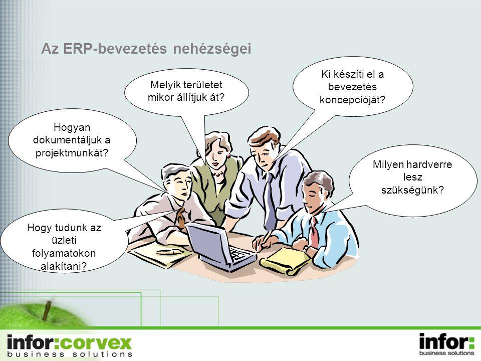 Az ERP-bevezetés nehézségei Ki készíti el a bevezetés koncepcióját.