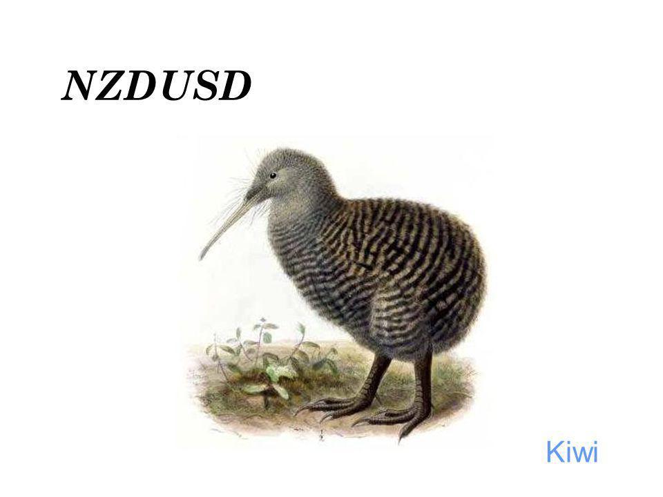 Kiwi NZDUSD