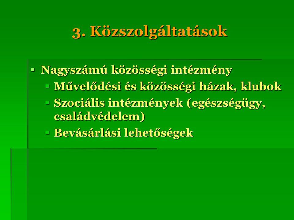 3. Közszolgáltatások  Nagyszámú közösségi intézmény  Művelődési és közösségi házak, klubok  Szociális intézmények (egészségügy, családvédelem)  Be