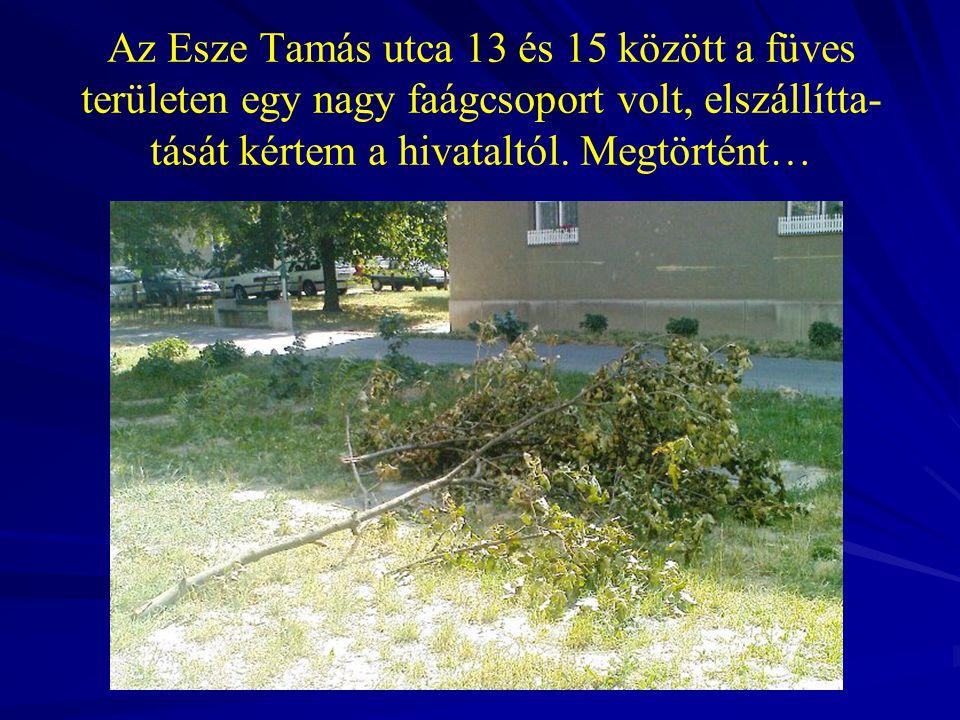 Az Esze Tamás utca 13 és 15 között a füves területen egy nagy faágcsoport volt, elszállítta- tását kértem a hivataltól. Megtörtént…