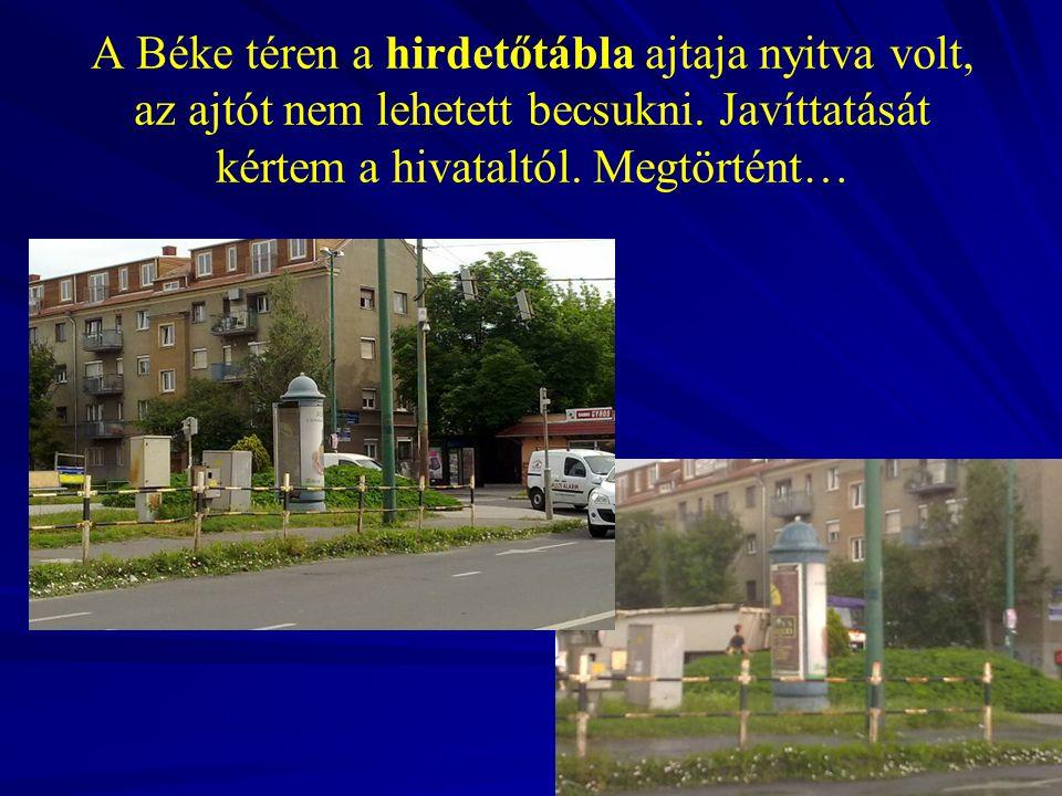 A Bocskai utca 7/B mögötti területen a nagyfeszültségi kábel alatt az E-ON - a város helyett - levágta a fás-bokros részt.