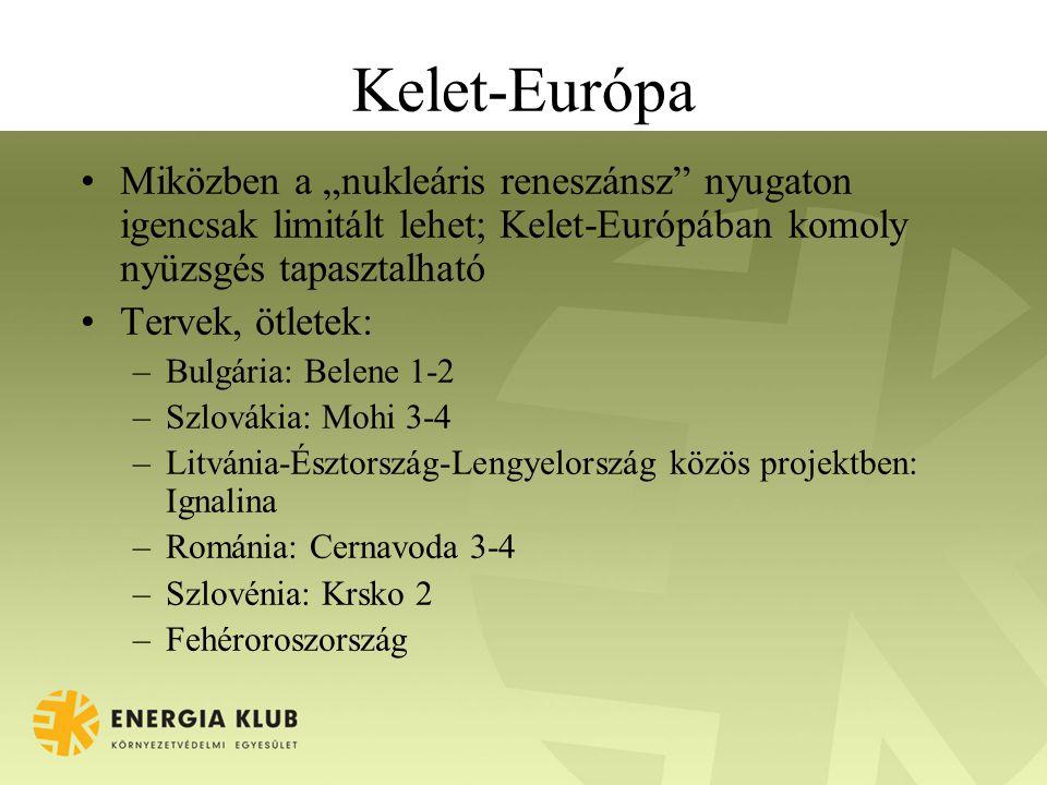 """Kelet-Európa Miközben a """"nukleáris reneszánsz nyugaton igencsak limitált lehet; Kelet-Európában komoly nyüzsgés tapasztalható Tervek, ötletek: –Bulgária: Belene 1-2 –Szlovákia: Mohi 3-4 –Litvánia-Észtország-Lengyelország közös projektben: Ignalina –Románia: Cernavoda 3-4 –Szlovénia: Krsko 2 –Fehéroroszország"""
