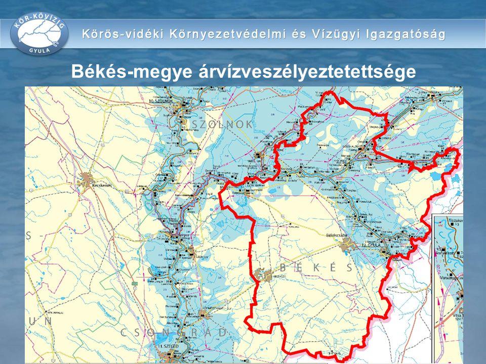 az országos vízrajzi törzshálózatba illeszkedő észlelő és figyelő hálózat kialakítása és működtetése a védekezési tevékenységgel összefüggő műszaki és szervezési egyeztetések biztosítása a védekezésre kötelezettek számára együttműködés a szomszédos államok illetékes szerveivel a közös védekezési szabályzatok szerint információs rendszer kialakítása és működtetése külön célú védekezési távközlő hálózatok kialakítása és működtetése A KÖVÍZIG-ek vízkárelhárítással összefüggő műszaki és igazgatási feladatai