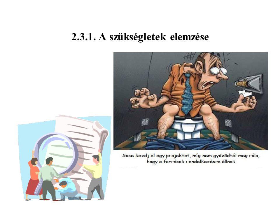 2.3.1. A szükségletek elemzése