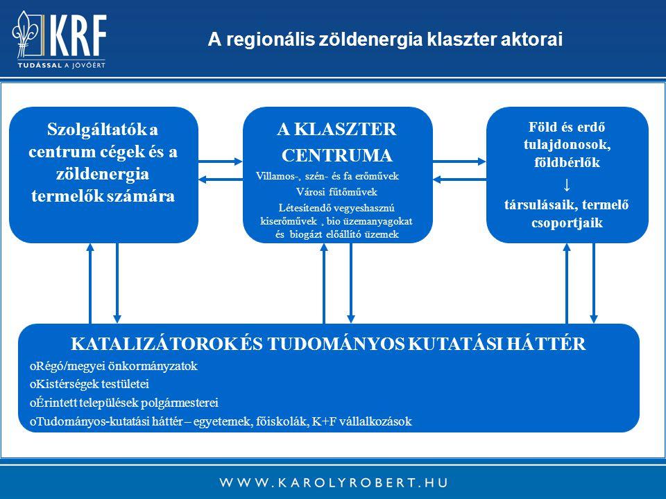 12 Szolgáltatók a centrum cégek és a zöldenergia termelők számára A KLASZTER CENTRUMA Villamos-, szén- és fa erőművek Városi fűtőművek Létesítendő vegyeshasznú kiserőművek, bio üzemanyagokat és biogázt előállító üzemek Föld és erdő tulajdonosok, földbérlők ↓ társulásaik, termelő csoportjaik KATALIZÁTOROK ÉS TUDOMÁNYOS KUTATÁSI HÁTTÉR o oRégó/megyei önkormányzatok o oKistérségek testületei o oÉrintett települések polgármesterei o oTudományos-kutatási háttér – egyetemek, főiskolák, K+F vállalkozások A regionális zöldenergia klaszter aktorai