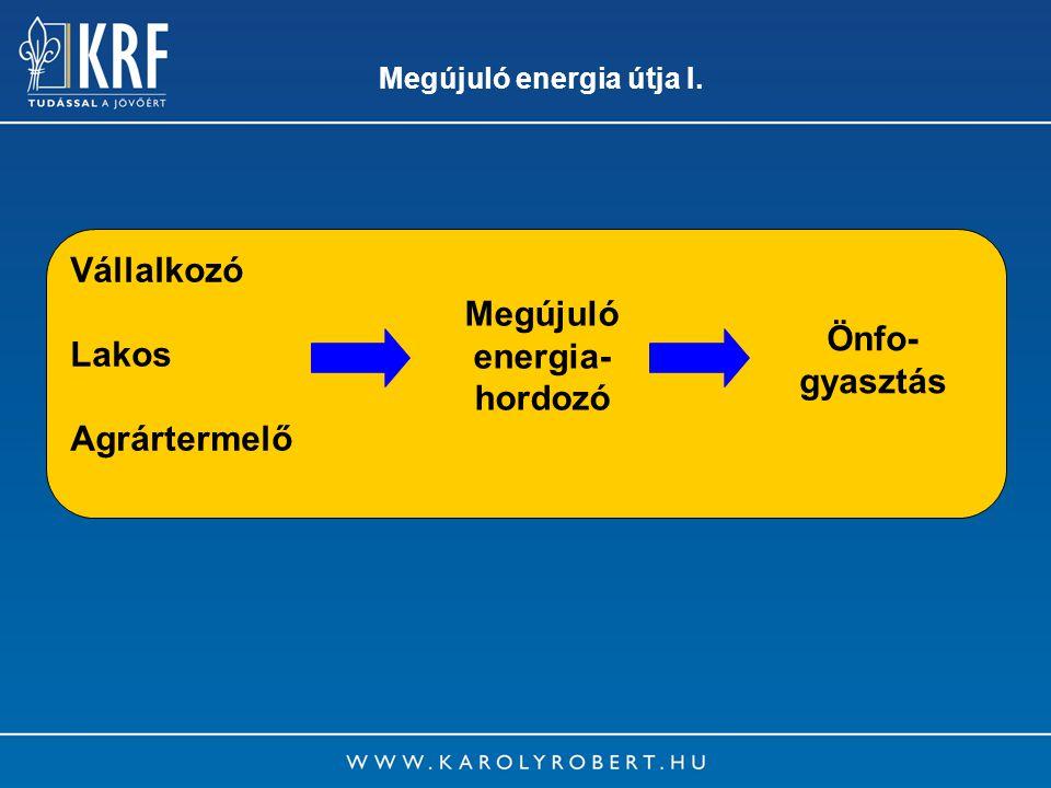 16 Megújuló energia útja I. Vállalkozó Lakos Agrártermelő Megújuló energia- hordozó Önfo- gyasztás