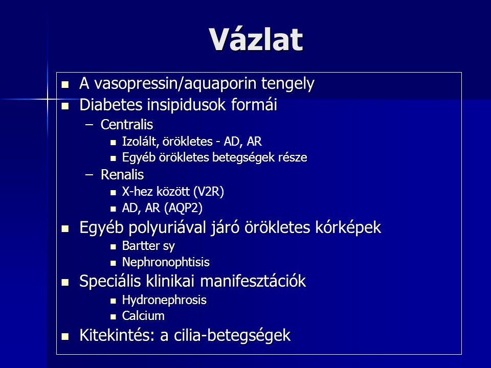 Vázlat A vasopressin/aquaporin tengely A vasopressin/aquaporin tengely Diabetes insipidusok formái Diabetes insipidusok formái –Centralis Izolált, örö