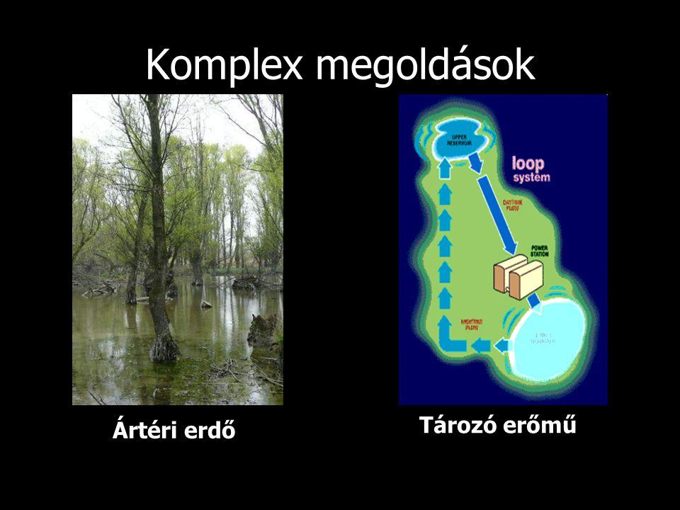 Komplex megoldások Ártéri erdő Tározó erőmű
