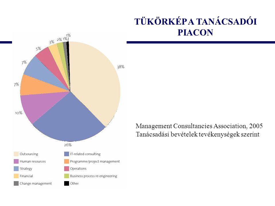 TÜKÖRKÉP A TANÁCSADÓI PIACON Management Consultancies Association, 2005 Tanácsadási bevételek tevékenységek szerint