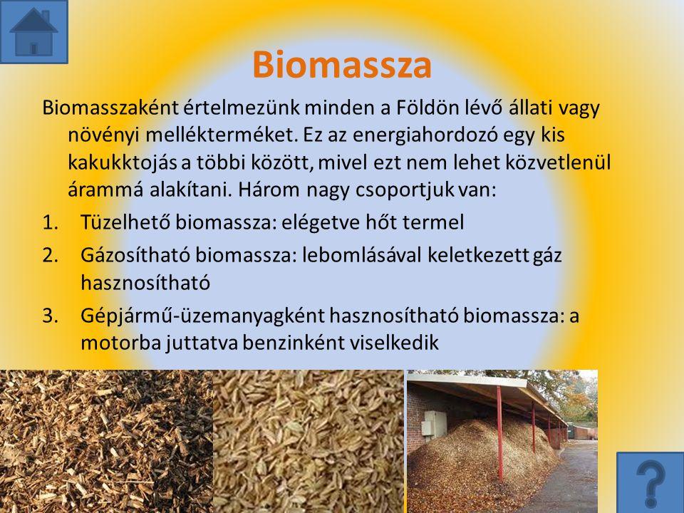 Biomassza Biomasszaként értelmezünk minden a Földön lévő állati vagy növényi mellékterméket. Ez az energiahordozó egy kis kakukktojás a többi között,