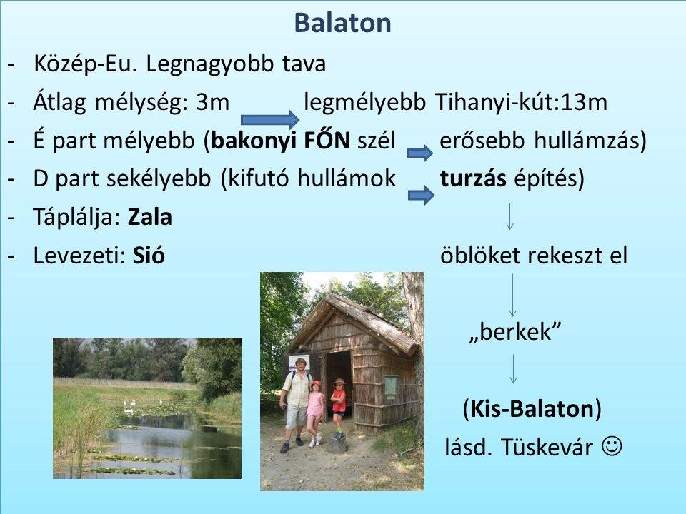 Balaton - Közép-Eu. Legnagyobb tava -Átlag mélység: 3m legmélyebb Tihanyi-kút:13m -É part mélyebb (bakonyi FŐN szél erősebb hullámzás) -D part sekélye