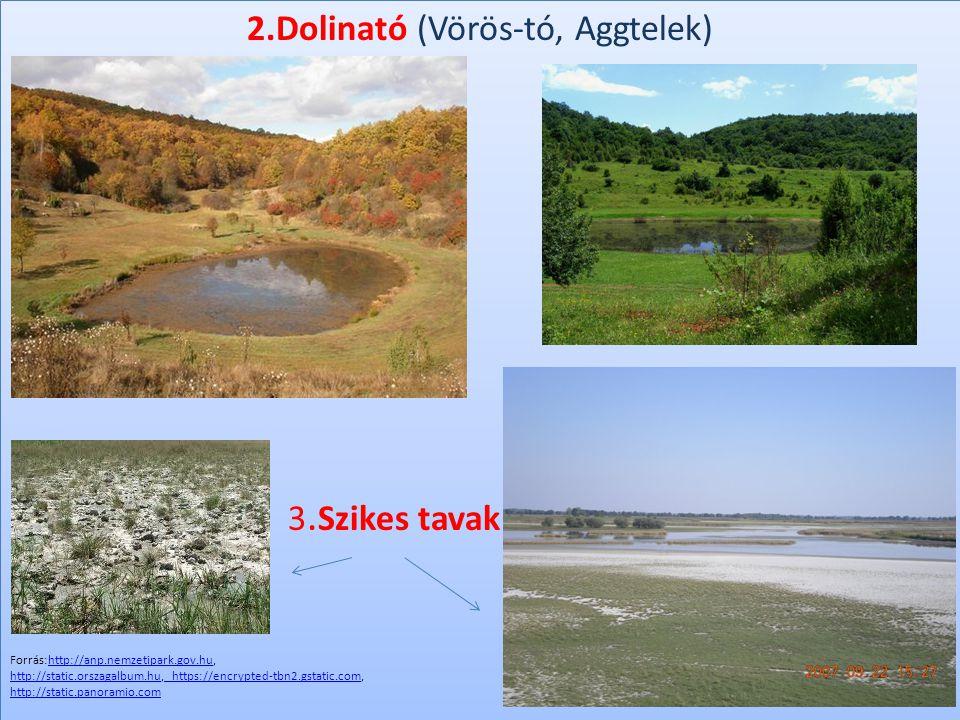 2.Dolinató (Vörös-tó, Aggtelek) Szikes tava 3. Szikes tavak 2.Dolinató (Vörös-tó, Aggtelek) Szikes tava 3. Szikes tavak Forrás:http://anp.nemzetipark.