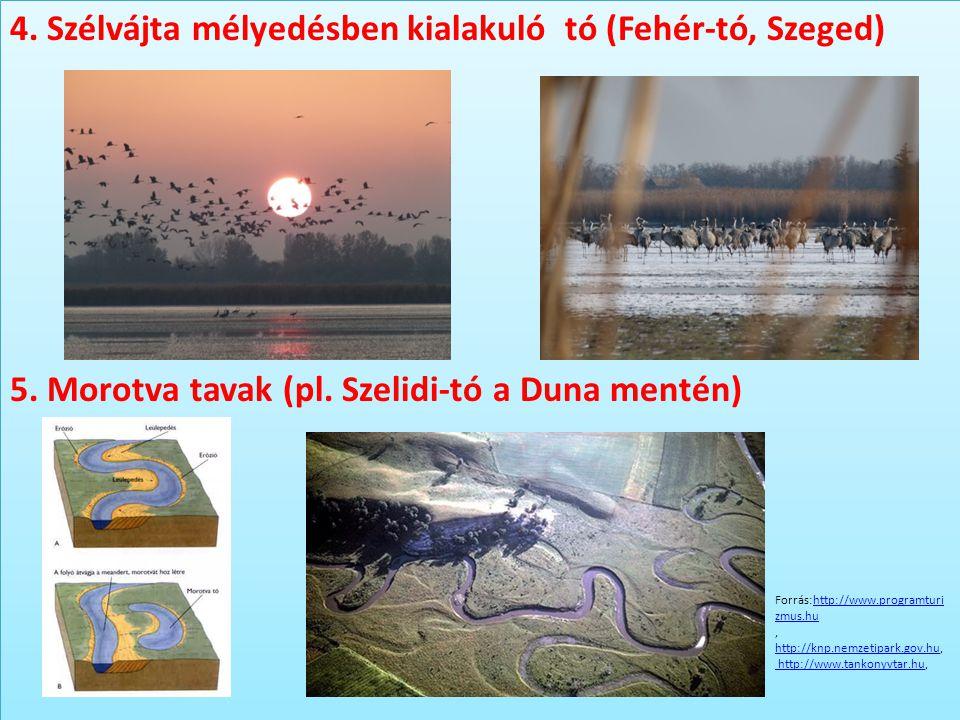4. Szélvájta mélyedésben kialakuló tó (Fehér-tó, Szeged) 5. Morotva tavak (pl. Szelidi-tó a Duna mentén) 4. Szélvájta mélyedésben kialakuló tó (Fehér-